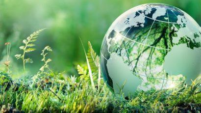 De 50 mest bæredygtige virksomheder i verden 2021