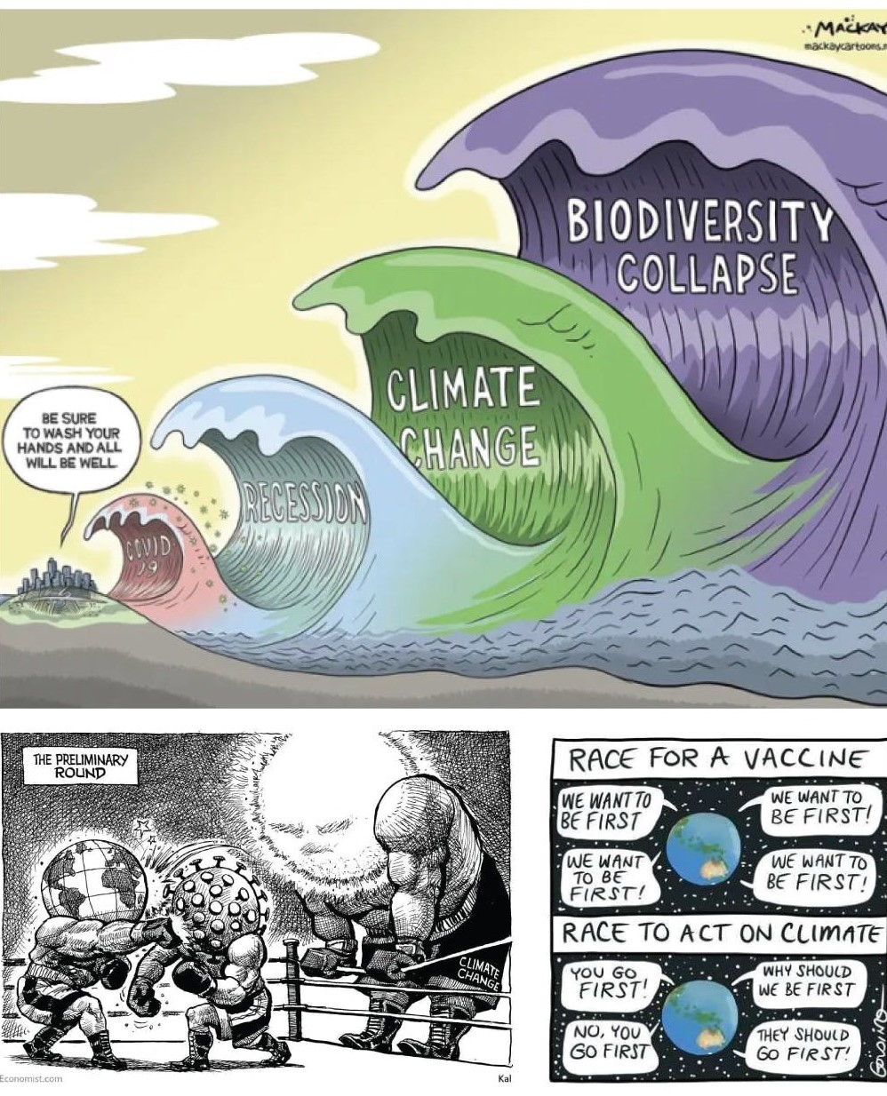 kursus i bæredygtighed, uddannelse i bæredygtighed